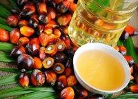 Все про пальмоядрову олію