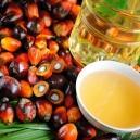 Все про пальмоядровое масло