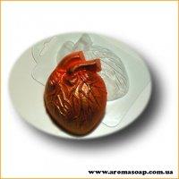 Живое сердце 73г (пластик)