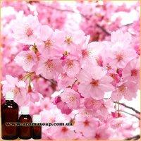 Рожеве дерево запашка