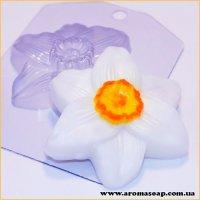Нарцисс 75 г (пластик)
