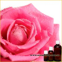Троянда Болгарська запашка