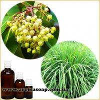 Бленд ефірних олій Деревно-цитрусовий 6074