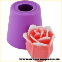 Роза Осирия в бутоне 3D элит-форма