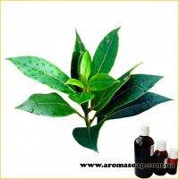 Ефірна олія Чайного дерева Німеччина
