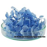 Гортензія стабілізована блакитна 500 мг