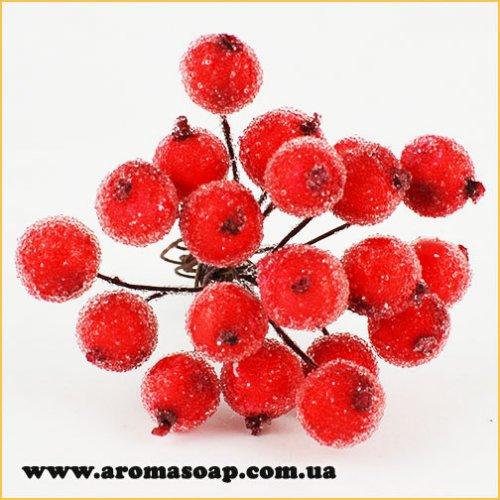 Калина сахарная из 20 ягодок Красная