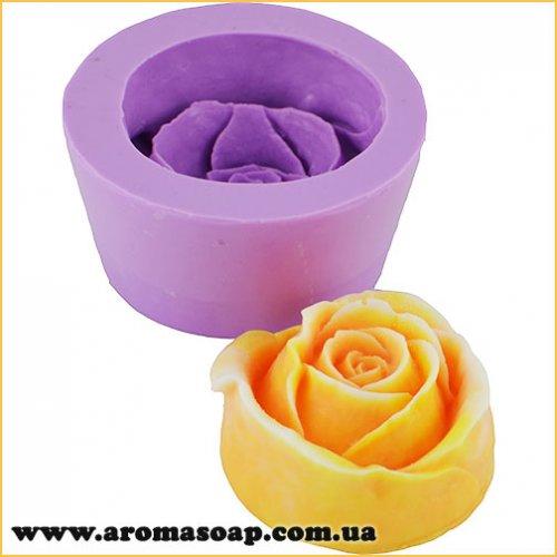 Роза Аква 3D элит-форма