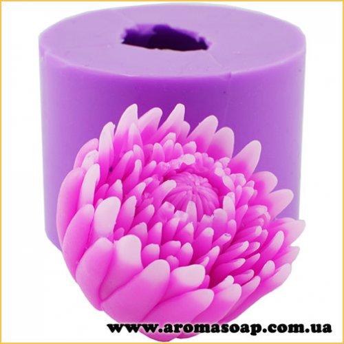 Хризантема розкрита бутоном 3D еліт-форма