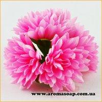 Бутоны Хризантем декоративные розовые 5 шт
