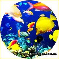 Картинка Sea-013