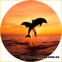 Картинка Sea-016
