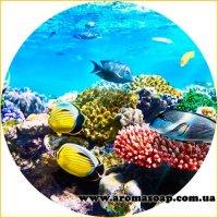 Картинка Sea-018