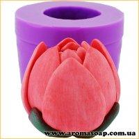 Лотос рожевий бутон закритий 3D еліт-форма