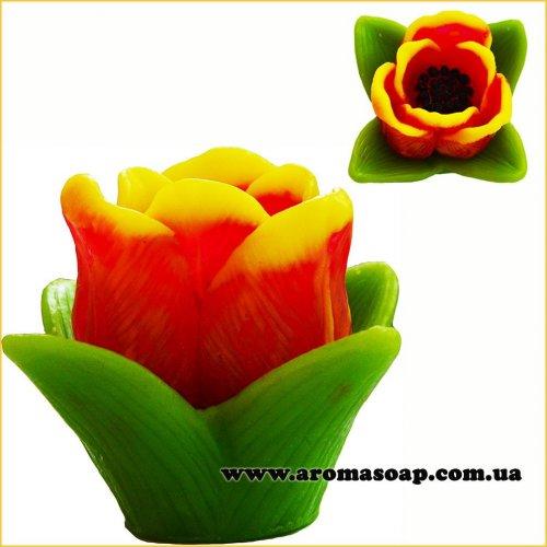 Маленький тюльпан 3D элит-форма