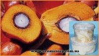 Масло Пальмовое РДО (баттер) ящик 20 кг
