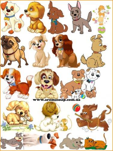 Набір картинок Собачки