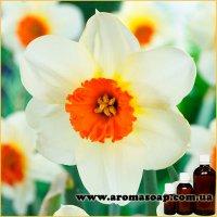 Нарцисс отдушка