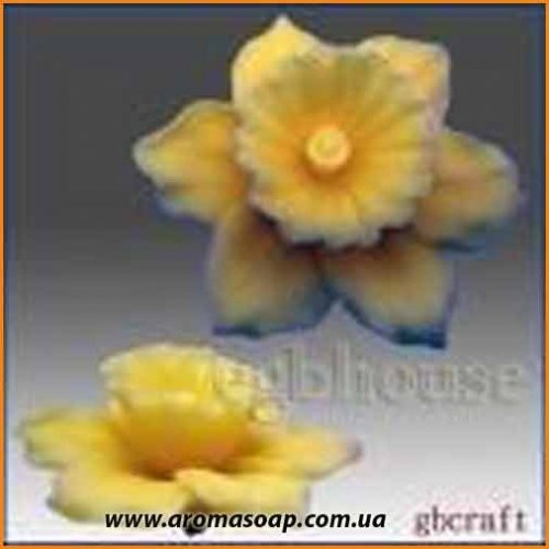 Нарцисс 3D элит-форма