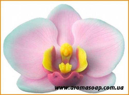 Орхидея 3D элит-форма