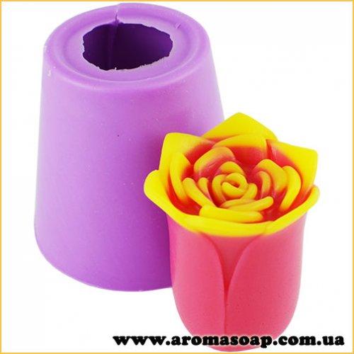 Роза Рубин стар 3D элит-форма