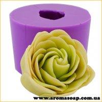 Роза Флорида в бутоне 3D элит-форма