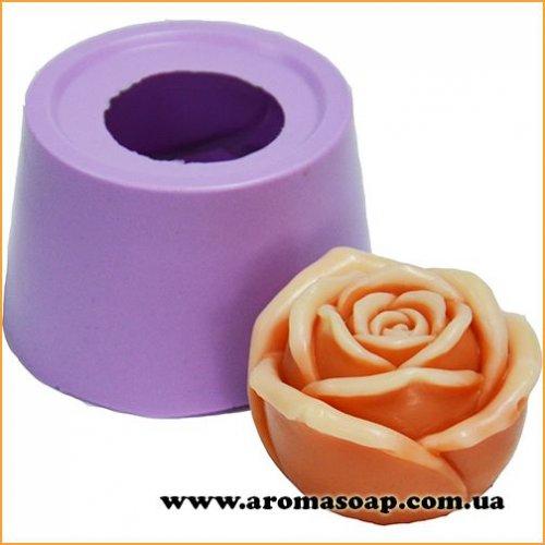 Роза Глория в бутоне 3D элит-форма