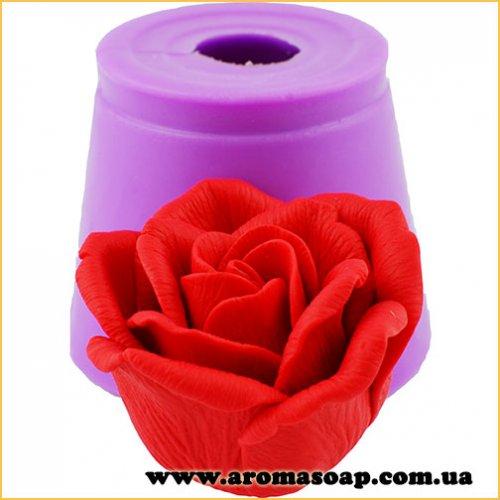 Троянда Інтуїція в бутоні 3D еліт-форма