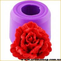Роза Сфинкс раскрытая 3D элит-форма