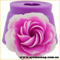 Роза Том Браун 3D элит-форма