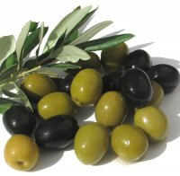 Сквалан оливковый 10 мл
