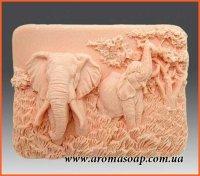 Слоны элит-форма