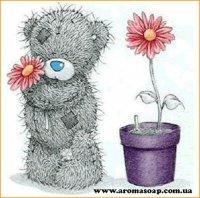 Картинка Teddy-001