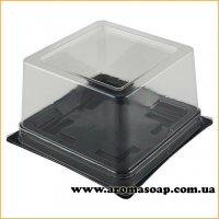 Пластикова упаковка Квадрат з чорним дном
