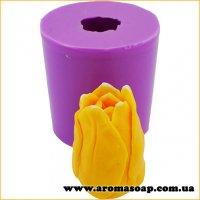 Тюльпан в бутоне 02 3D элит-форма