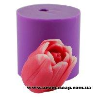 Тюльпан Jack Pot напіврозкритий 3D еліт-форма