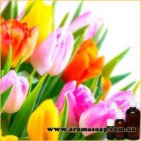 Тюльпан запашка