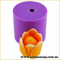 Тюльпан Верона бутон раскрытый 3D элит-форма