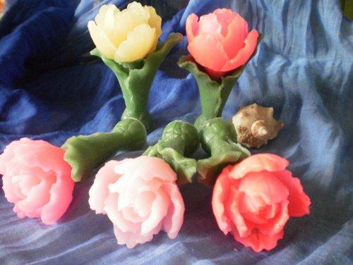 Тюльпан 3D еліт-форма