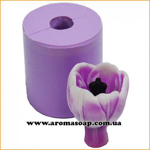 Тюльпан Candy в бутоні 3D еліт-форма