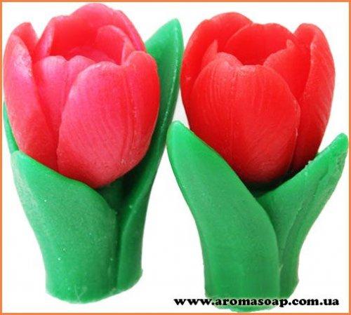 Весняний тюльпан 3D (2 форми) еліт-форма