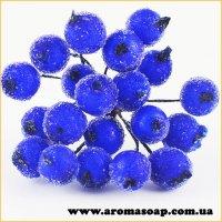 Калина цукрова з 20 ягідок Синя